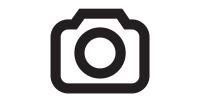 FNZ (UK) Ltd - Czech Branch, odštěpný závod
