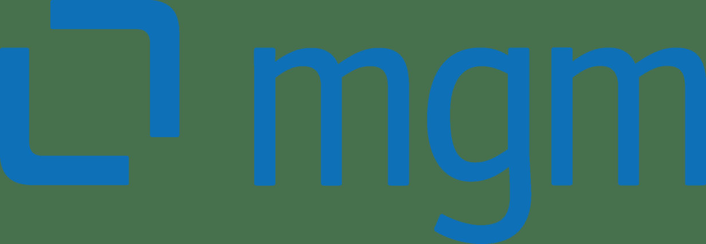 mgm technology partners s.r.o.