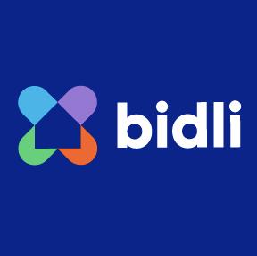 skupina BIDLI
